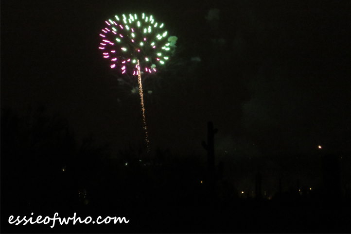 2017 4th of july firework (4)