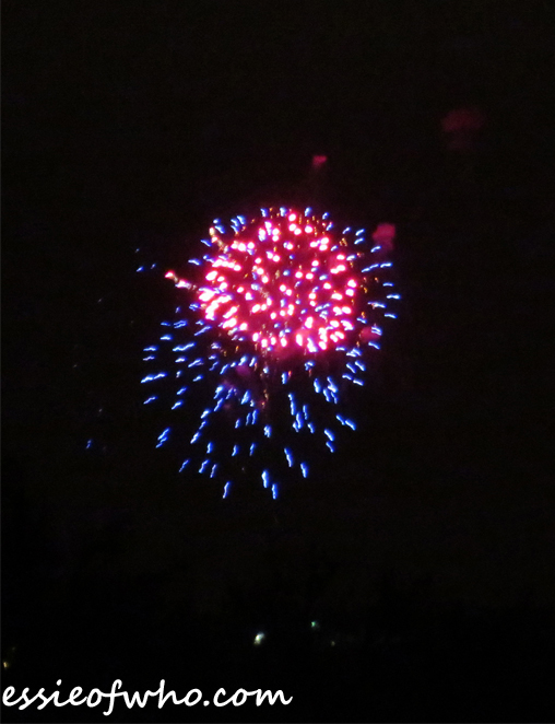 2017 4th of july firework (5)