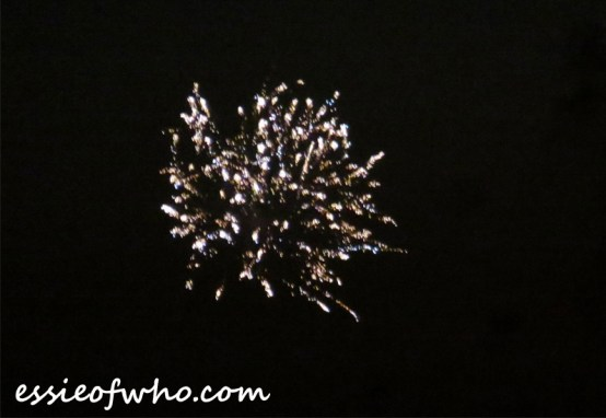 2017 4th of july firework (6)