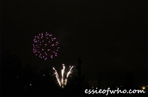 2017 4th of july firework (7)