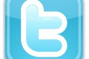 Twitter-Logo-300x293-1-300x200