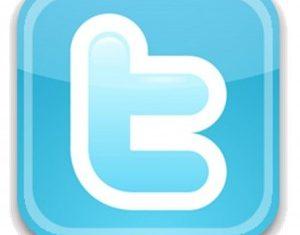Twitter-Logo-300x293-1-300x235