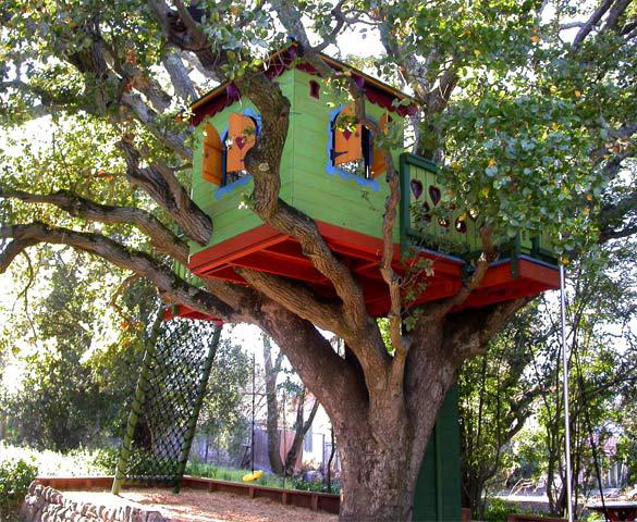 Casita en un árbol