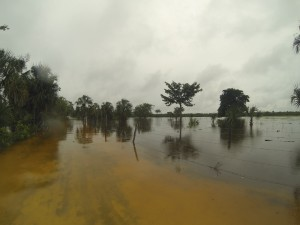 "Camino ""saca cosechas"". Sur Quintana Roo, 18 septiembre. Foto: Bruno Cárcamo."