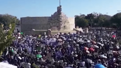 """Foto de Mujeres y niñas marchan, manifiestan """"Ni una más"""""""