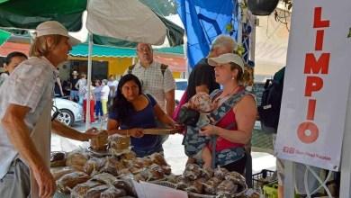 Foto de Slowfood Yucatán tendrá nuevas sedes