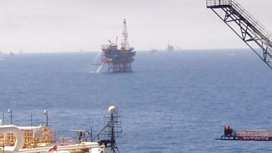 Foto de Retoma crecimiento precio del barril de petróleo mexicano
