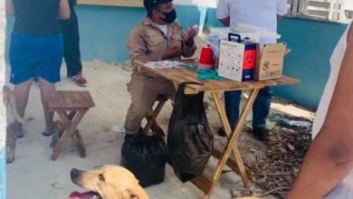 Foto de Inicia vacunación antirrábica en los 11 municipios de Campeche