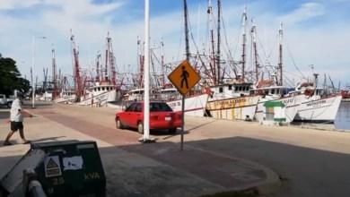 Foto de Zarpa casi la mitad de la flota camaronera a aguas tamaulipecas