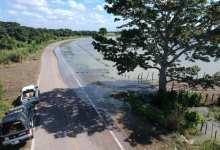 Foto de Alertan por inundación parcial de carretera de acceso a Palizada