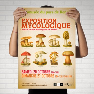 Ecomusee-exposition_mycologique