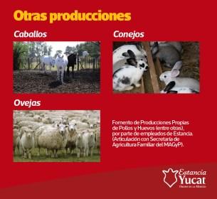yucat12