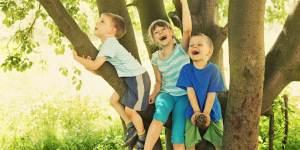 happy children sitting in tree