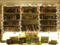 Bookshelf Lighting Ideas | Lighting Ideas