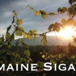 Domaine Sigalas a hit in the US Press