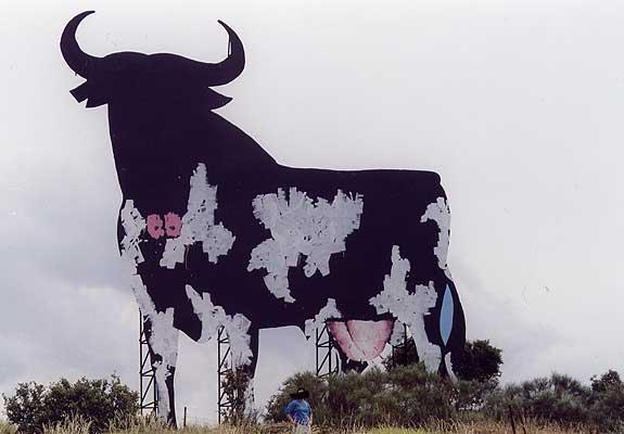 vaca Osborne
