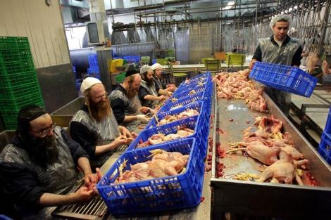 Israel pide a Polonia que no prohiba la produccin de