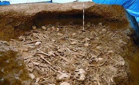 Algunos de los restos humanos del neolítico hallados durante los trabajos del AVE en La Sagrera.