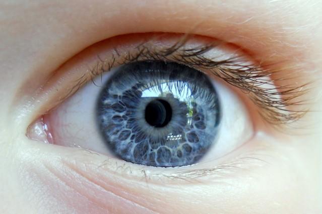 Identificada la proteína responsable de la muerte celular que provoca ceguera, Periódico San Juan