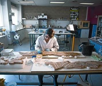 La restauradora Sílvia prepara el mosaico romano de La Sagrera en el taller municipal de la Zona Franca, ayer.