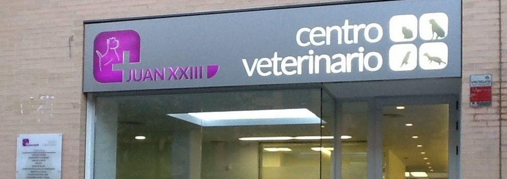 Veterinario 24h en Valencia  Centro Veterinario Juan XXIII