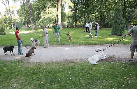 Perros, y sus dueños, en el Parque de Retiro de Madrid. | O. Monzón