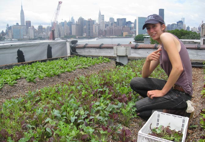Annie Novak recoge verduras ecológicas en su tejado de Brooklyn. | Carlos Fresneda