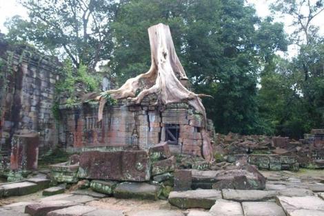 Una de los templos de Angkor, invadidos por la naturaleza. | Teresa Guerrero