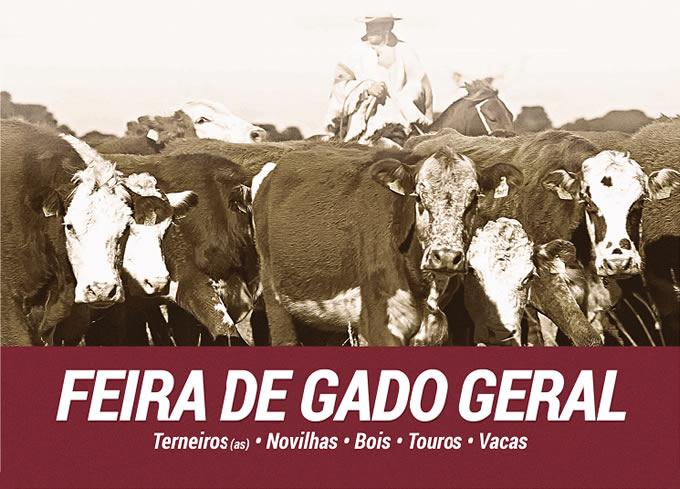 feira_gado