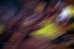 estelas-de-hojas-8