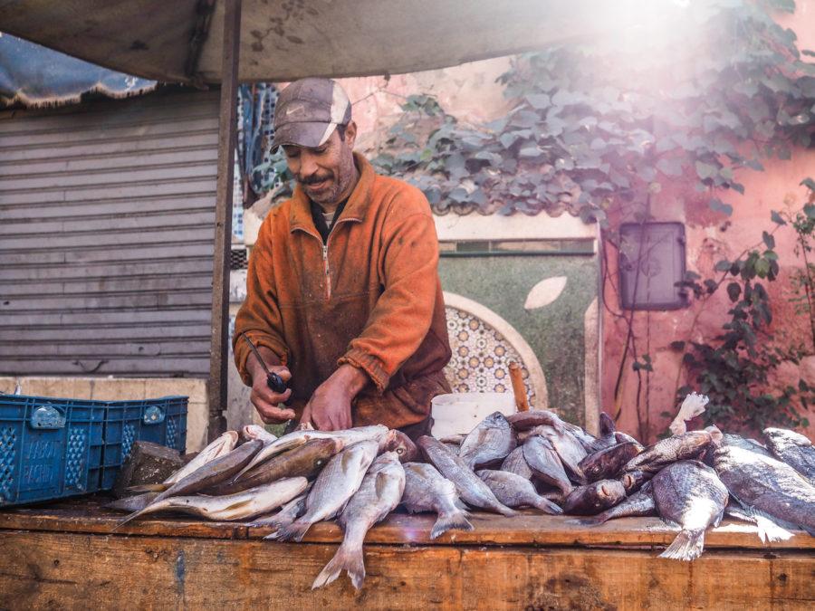 Vendeur de poisson à Marrackech