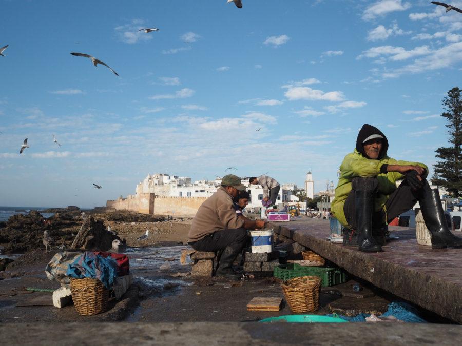 Port de pêche, Essaouira