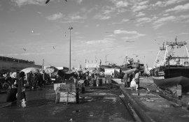 17-12_Maroc_Marrackech_Essaouira-NB