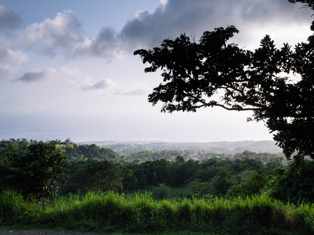 18-06_Antilles_Guadeloupe_HD-7