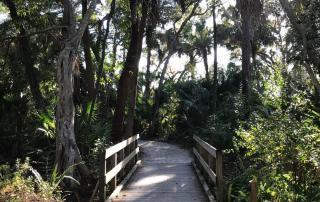 Koreshan State Park boardwalk