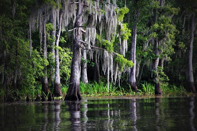 Important BoCC Vote Wednesday on Wetlands