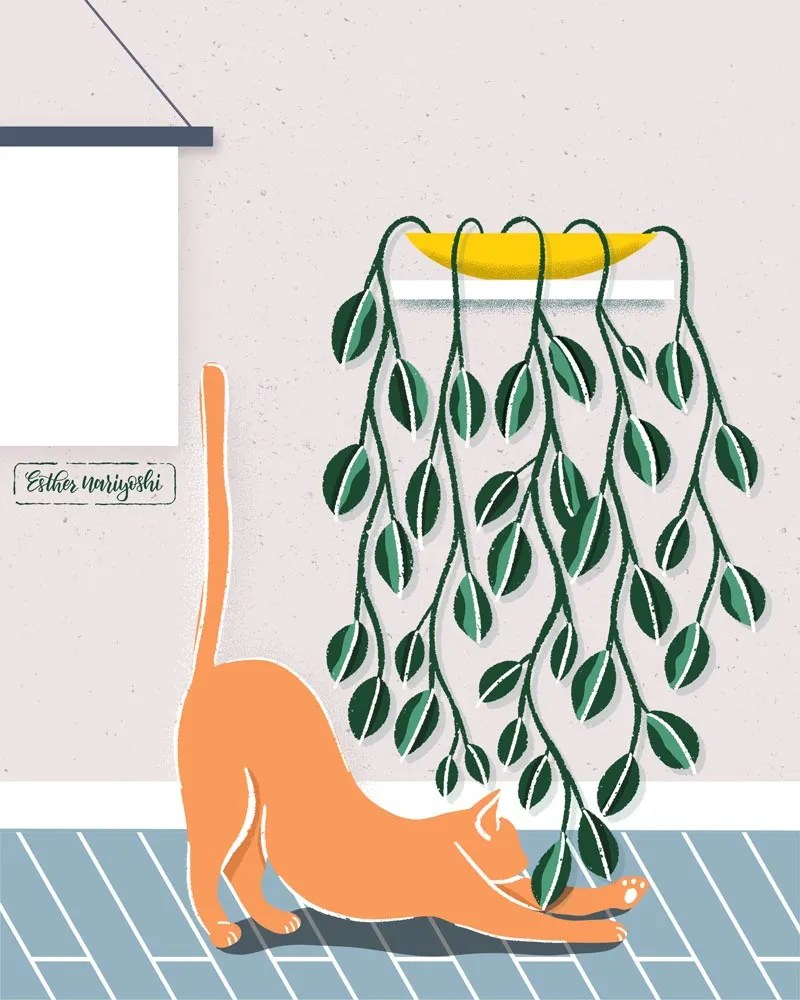 cat yoga illustration by Esther Nariyoshi