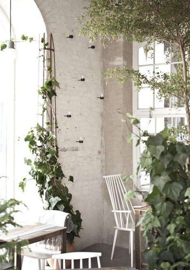 decoracion-blanco+plantas-04