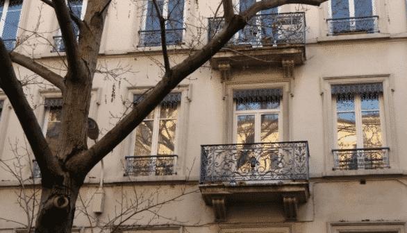 immobilier lyon 7 quartier de la thibaudiere