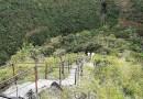 Un sendero se convierte en nuevo atractivo turístico en Boquete.