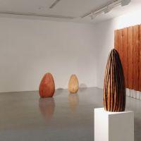 Esculturas biológicas de David Nash