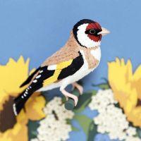 Aves de papel, de Diana Beltrán