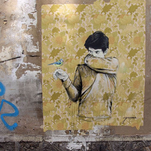 Camuflado entre papel pintado: el street art de Agrume Noir