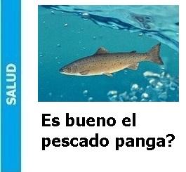 es_bueno_el_pescado_panga_Portada