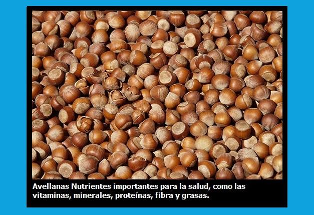 Los frutos secos más saludables3, Los frutos secos más saludables3