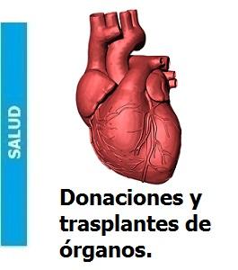 donaciones_y_trasplantes_de_organos_Portada