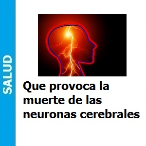 Que provoca la muerte de las neuronas cerebrales