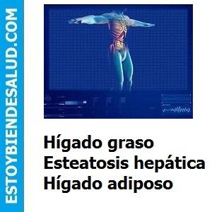 Hígado graso, Esteatosis hepática, Hígado adiposo.