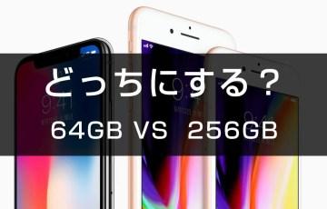 64GBと256GB