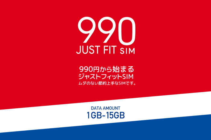 990JUST FIT SIM